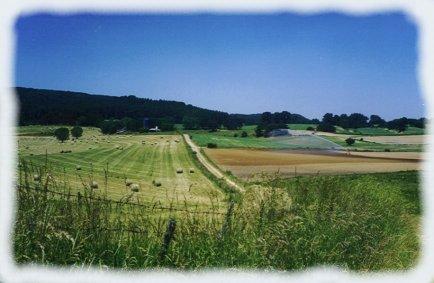 La coltivazione e l'allevamento
